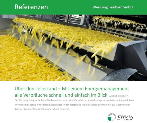 referenzbericht-efficio-energiemanagement-bei-wernsing-feinkost